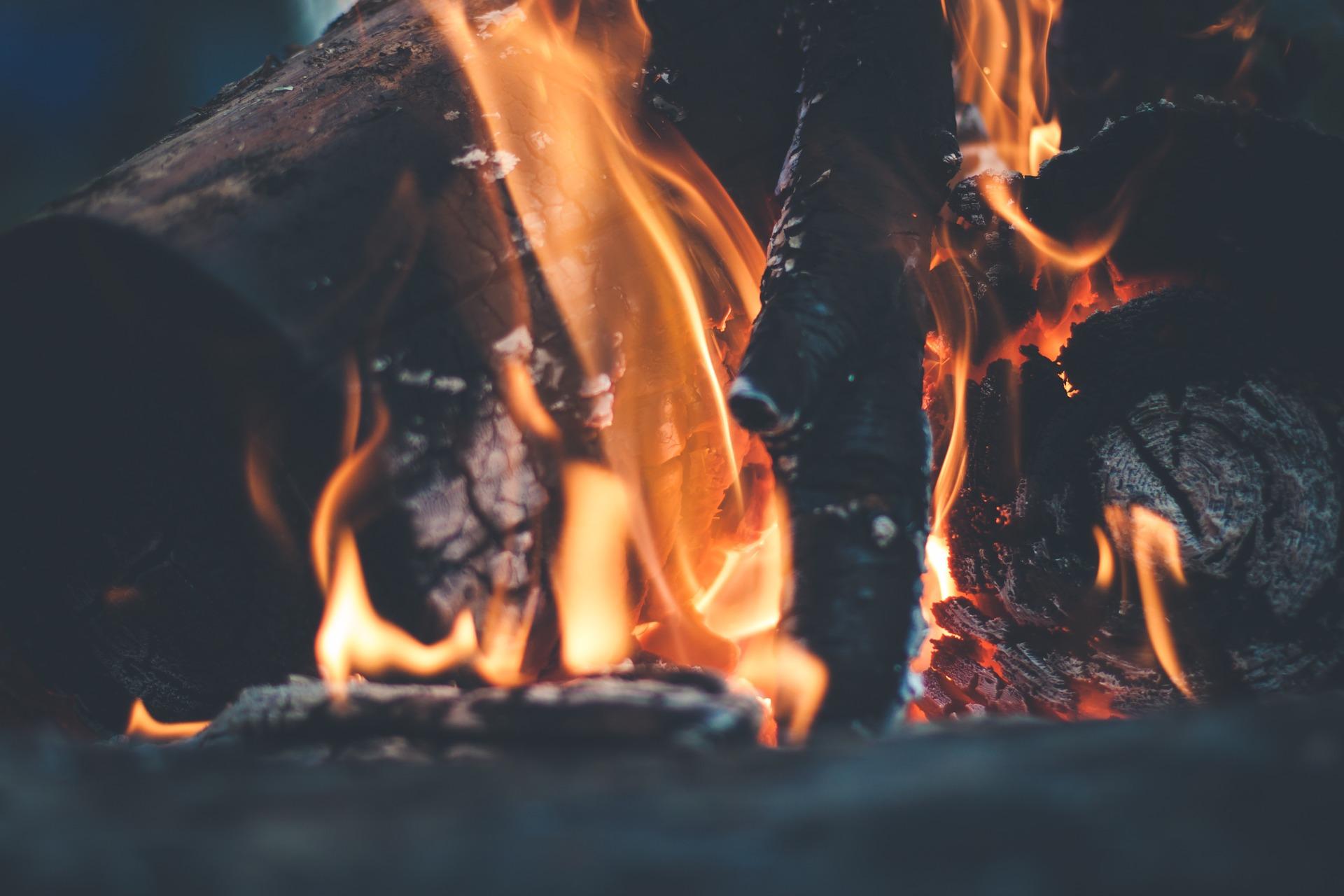 Dřevo na topení – ano či ne?