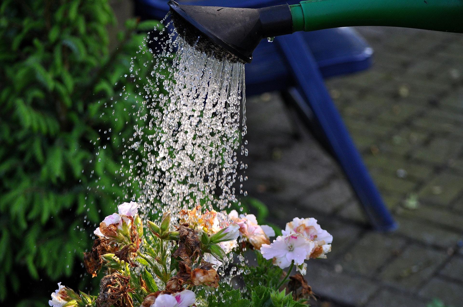 Jak na vrtání studny