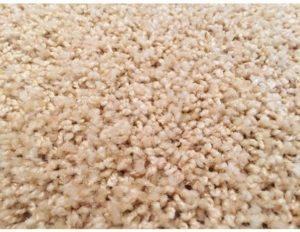 Kusový koberec Color Shaggy