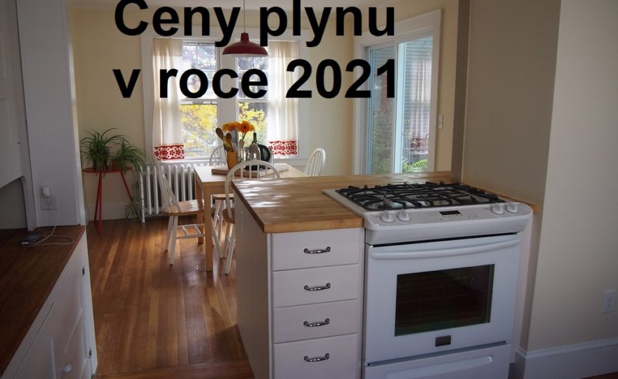 ceny plynu 2021